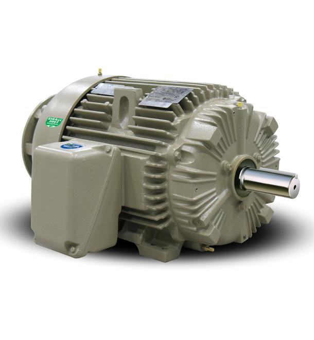Low Voltage NEMA Motors