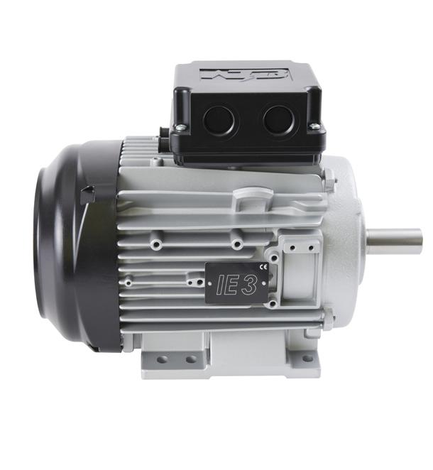 Low Voltage IEC Motors
