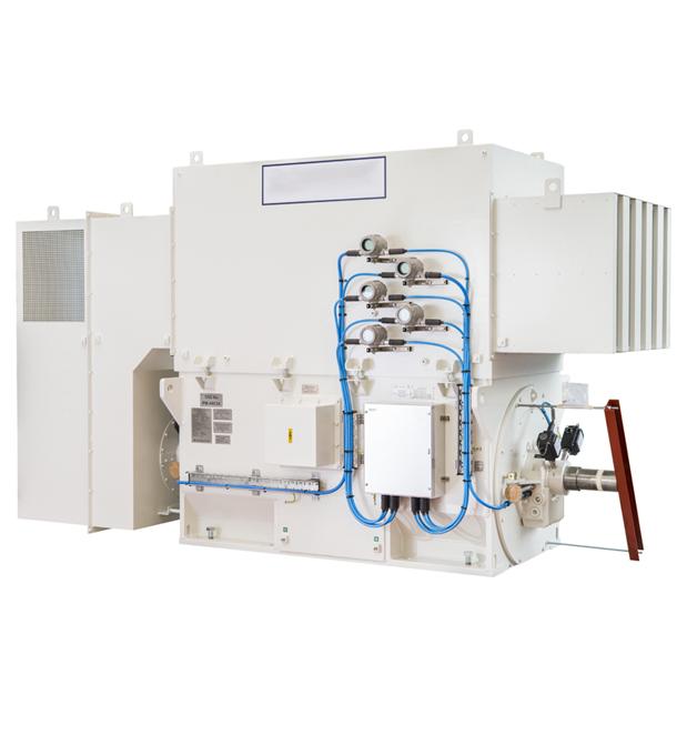 Medium / High Voltage Motors